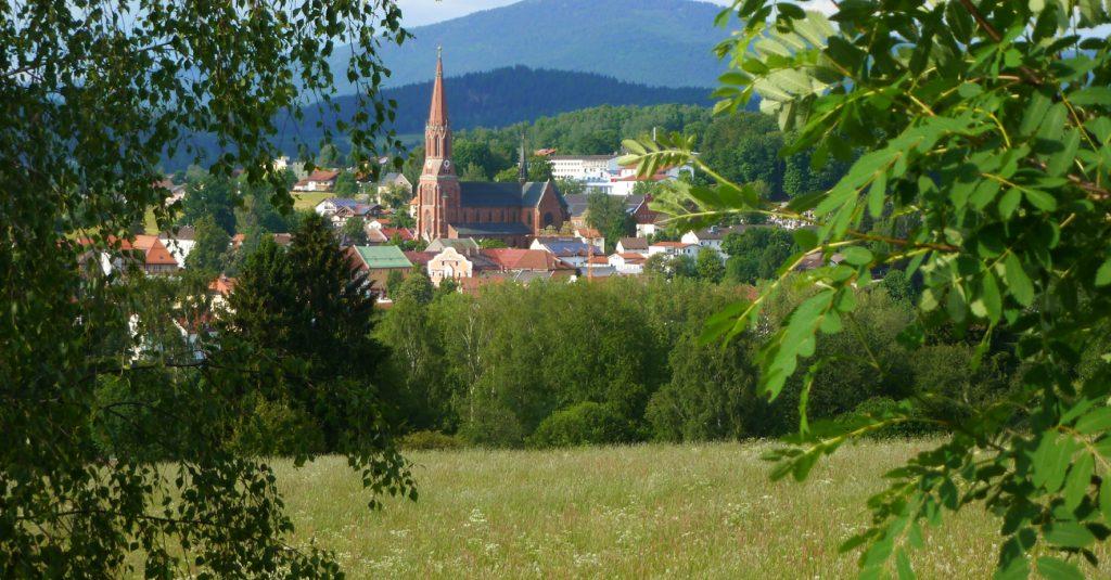 Zwiesel-Panorama